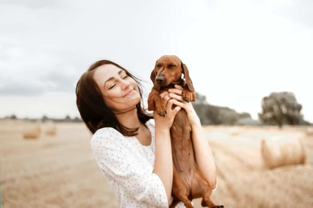 What Size Crate For Miniature Dachshund